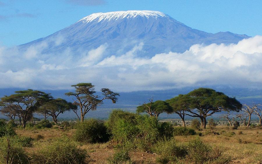 tanzania kilimanjaro and safari