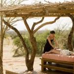 Wellness Safari