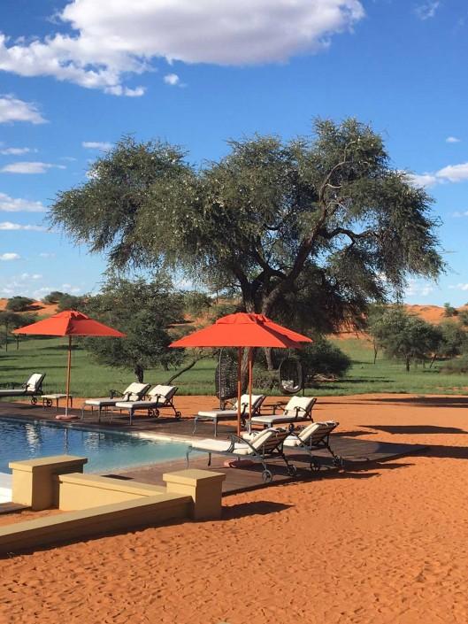Incentive in the Kalahari